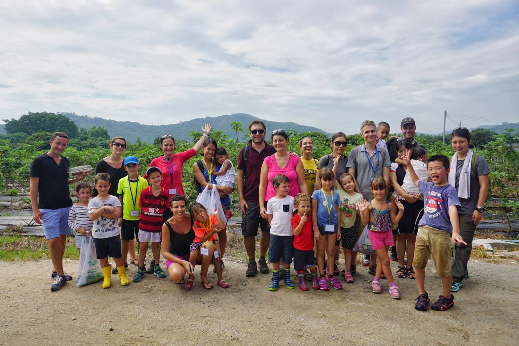 A Fun and Educational Day at the Organic Farm Golden Fig 结束全天趣味与科教一体的生态农庄之旅