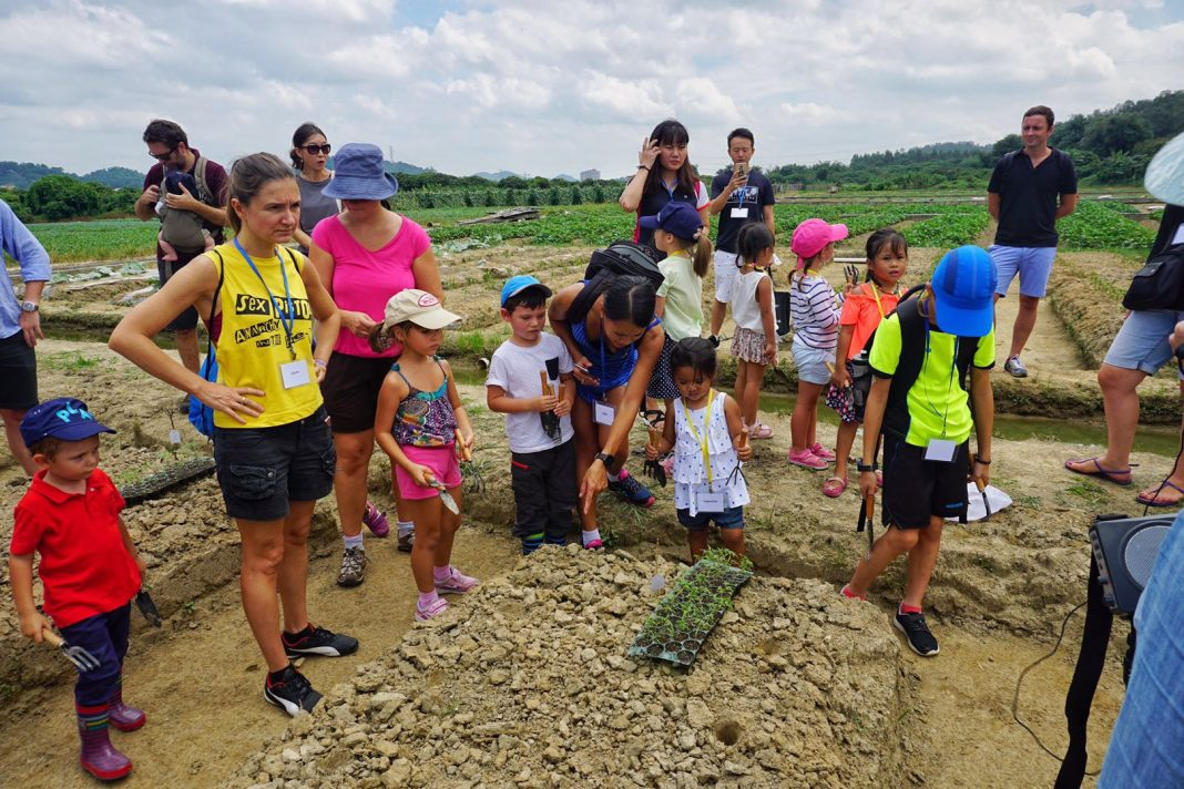 Parents and Children Learning about the Farm and How to Plant Vegetables 父母亲和孩子们一起聆听关于农庄的介绍和如何种植蔬菜