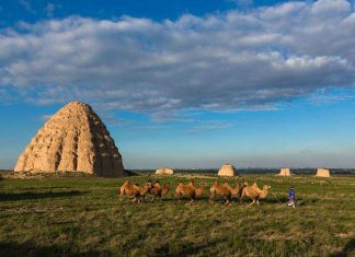 西夏王陵,图片版权:全景网 | Western Xia Imperial Tombs, photo credic: www.quanjing.com