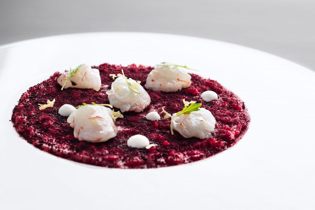 意式烩饭配海螯虾,甜菜根,酸奶 | Risotto, Scampi, Beetroot, Yoghurt