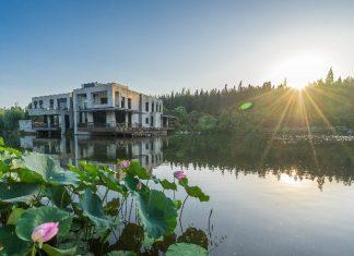 走出大湾区:优享上海怡沁园度假村 | Delta Escape: Shanghai Qiyinyuan Resort Special Leisure Package