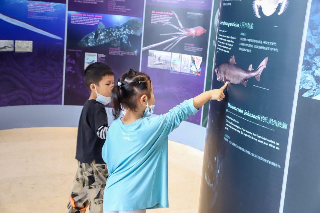 儿童观众参观海洋主题展览 | Children visit the ocean theme exhibition
