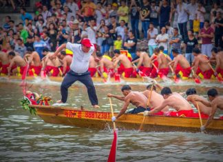 """东莞龙舟月""5月15日启动,起龙广场见! 